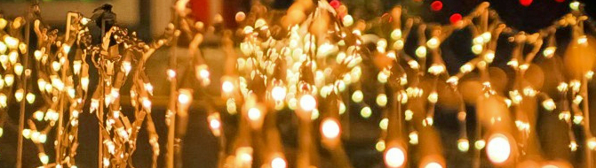 iciclelights
