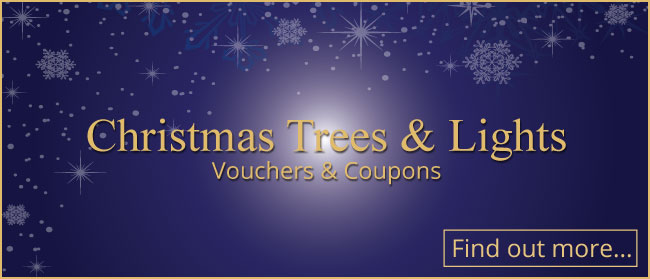 Visit Christmas Trees and Lights: Vouchers & Coupons