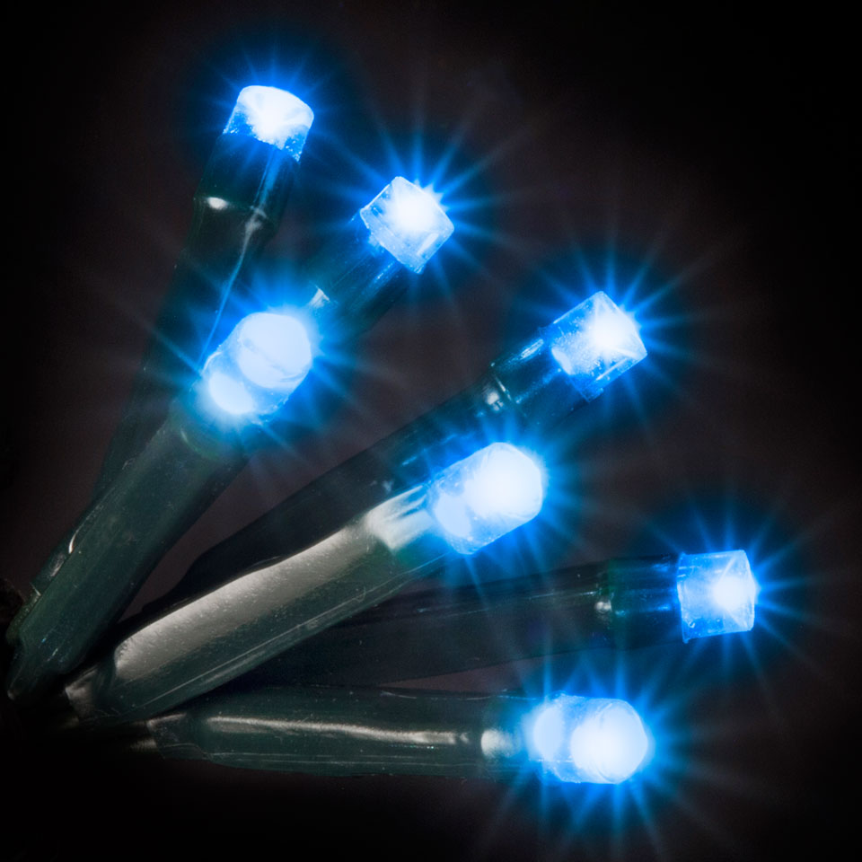 100 Blue LED Static Lights
