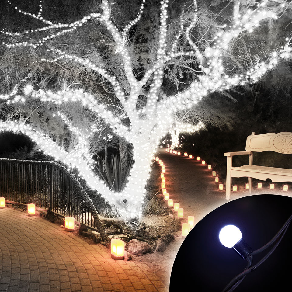Click to view product details and reviews for 100 Connectable Ice White Led Globe Lights On Rubber Cable.