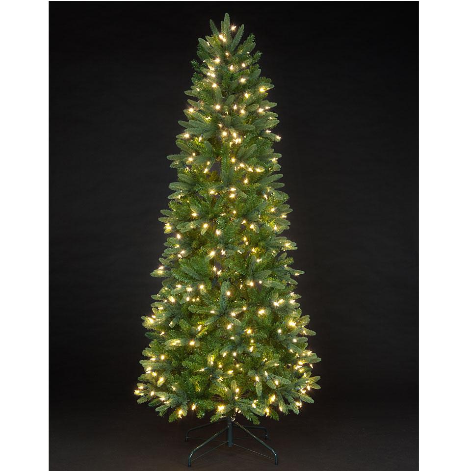christmas tree uk price