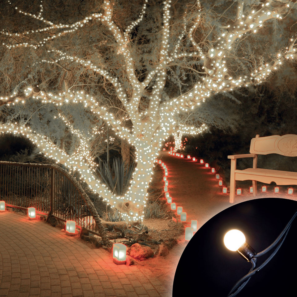 Click to view product details and reviews for 100 Connectable Warm White Led Globe Lights On Rubber Cable.