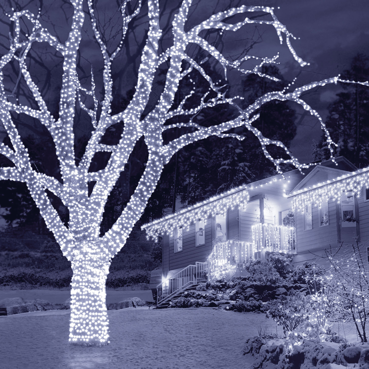 Christmas Trees and Lights Ice White Connectable LED Lights