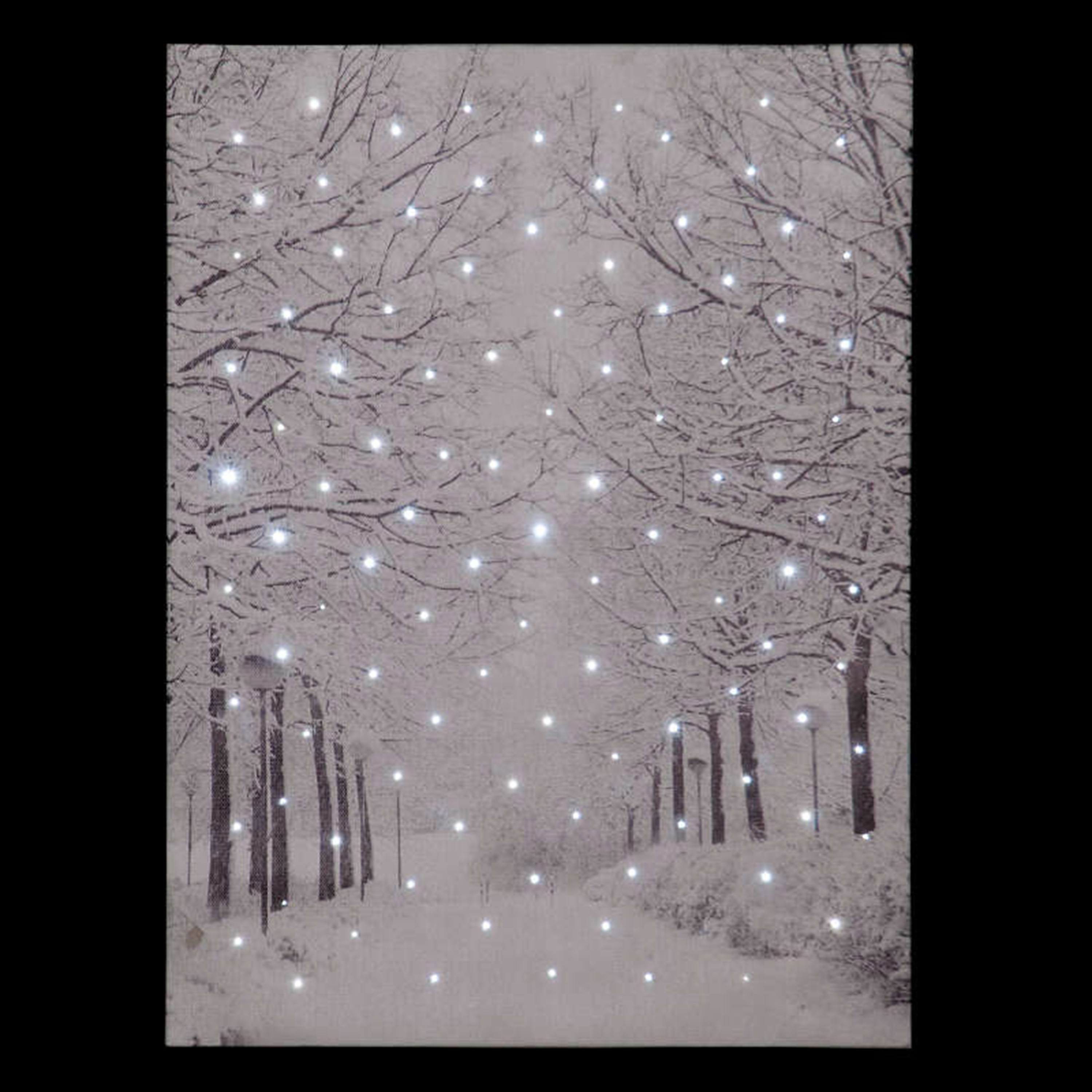 Click to view product details and reviews for Frosted Forest Illuminated Canvas.