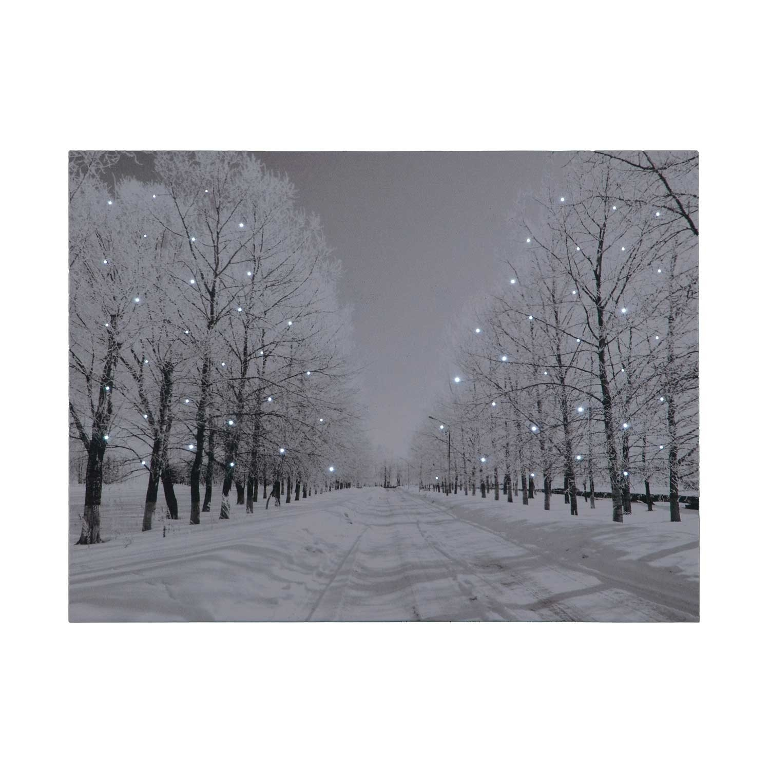Click to view product details and reviews for Battery Operated Fibre Optic 40x30cm Tree Lined Snowy Avenue At Night Canvas.