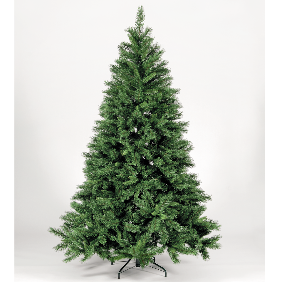 Top 28 Buy Kensington Fir 4ft Pre The 7ft Arbor Vitae