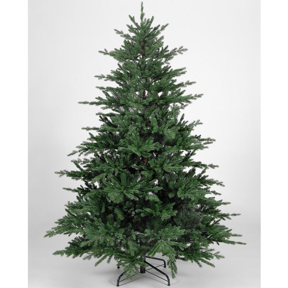 Pe Christmas Trees Uk