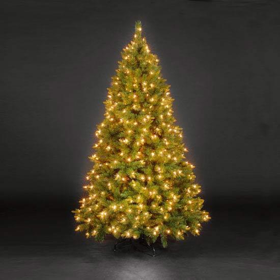 Christmas Trees 5ft/150cm St Moritz Spruce Blue Pre-Lit LED Christmas Tree
